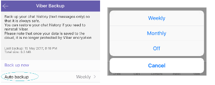 auto backup viber messages on iPhone
